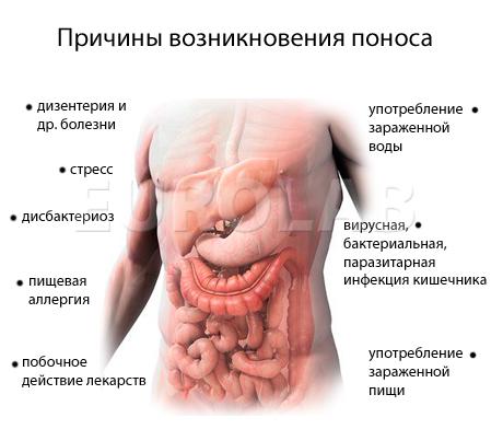 причина возникновения холестерина в крови