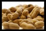 Пищевые аллергены очень распространены в Украине; Арахис – самый распространенный аллерген. Молоко, ракообразные, орехи и пшеница – наиболее распространенные пищевые аллергены. Аллергия обычно начинается в течение нескольких минут во время еды определенного продукта. Симптомы: астма, сыпь, рвота, диарея и опухание вокруг рта. Избегайте продуктов-аллергенов. Но если все-таки появились симптомы аллергии, рекомендуется принимать антигистаминные средства или стероиды. В случаях угрозы жизни необходимо сделать укол эпинефрина.