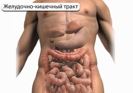 Головокружение при расстройстве кишечника