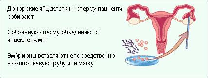 dlya-lyubiteley-pomolozhe