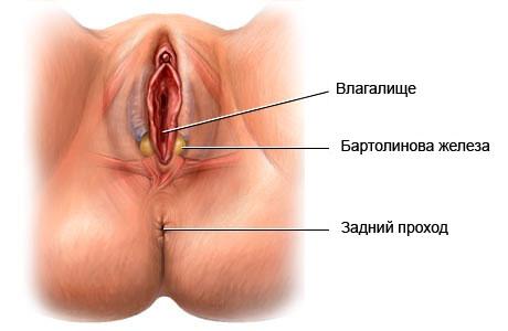 seks-konchayushih-zrelih-mamochek