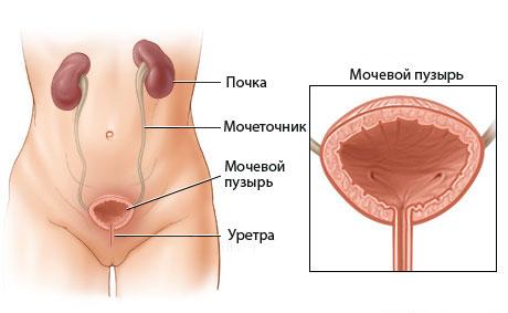 Боли при раке мочевого пузыря 83