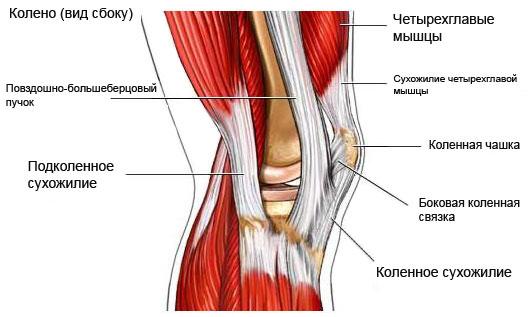 После давней травмы сильно опухает и болит колено вас заболел сустав или спина и