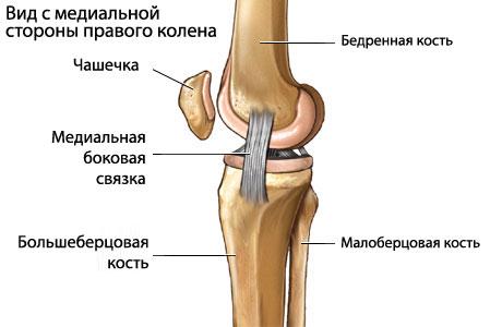 Разрыв мозговой связки коленного сустава сакские грязи при болях в суставах отзывы