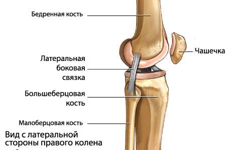 обызвествление связок тазобедренного сустава