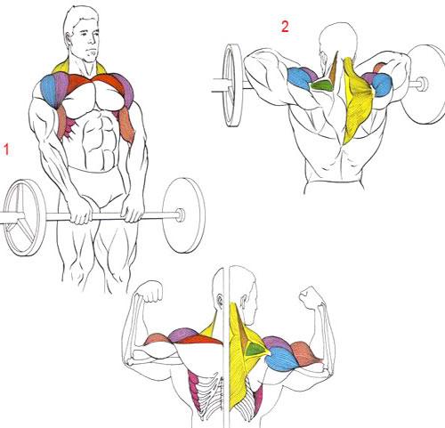 Как сделать плечи уже в домашних условиях