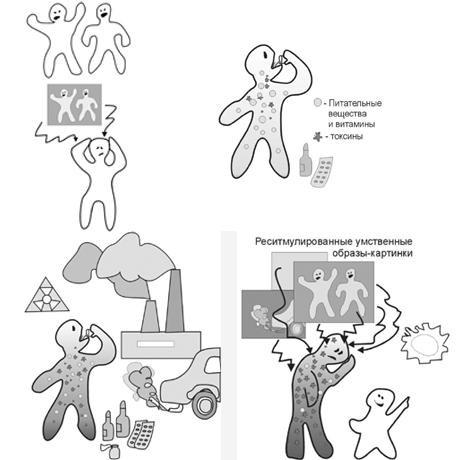 программа очищения организма от паразитов