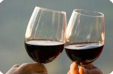 Совместимость алкоголя - Медицинский портал EUROLAB